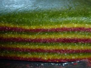 Farfalle tricolore5