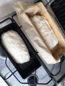 toastbrotkatharina2